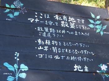 宍塚大池散策 (16).jpg